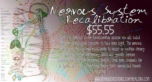 Nervous System Recalibration