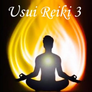 Usui Reiki Level 3