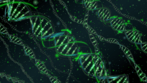 Holographically Encoded DNA