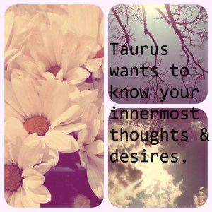 Taurus Thoughts And Desires