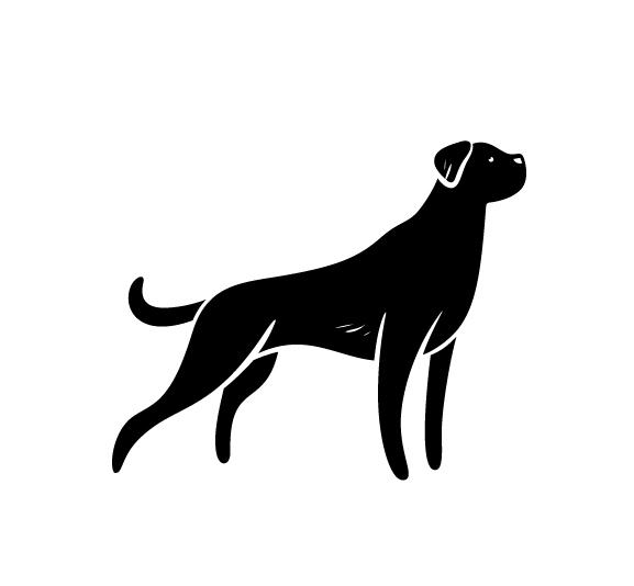 Pet Astrology