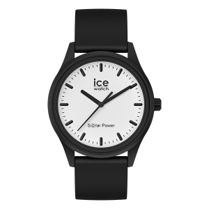 IW017763 - IceWatch Solar Power