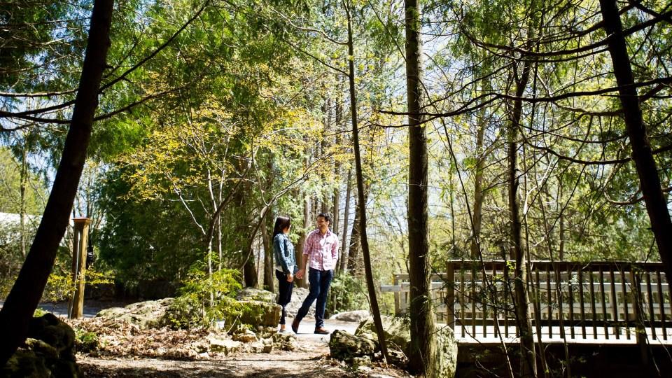 Forest Walk, The Millcroft Inn & Spa, Spas of America