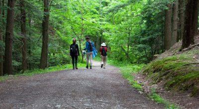 New Life Hiking Spa, Spas of America