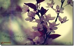 fromspringtospring__40
