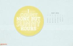Sunny hours 32