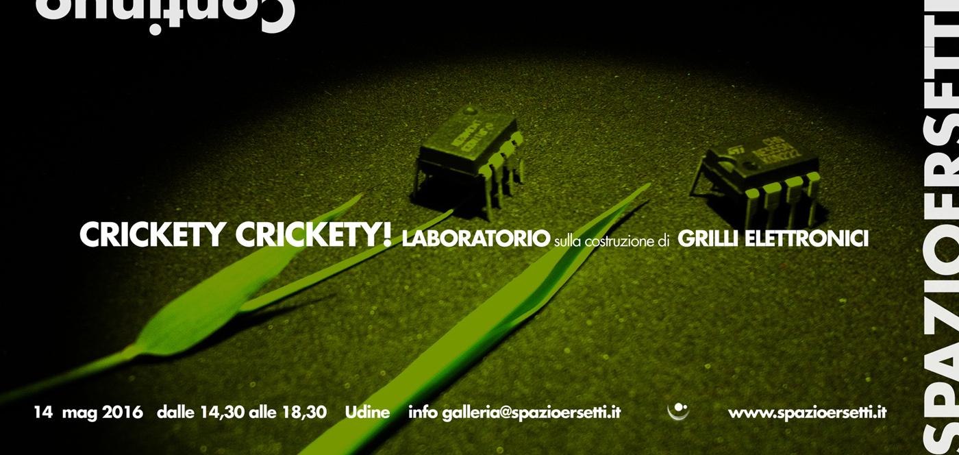 Krickety Crickety! - workshop