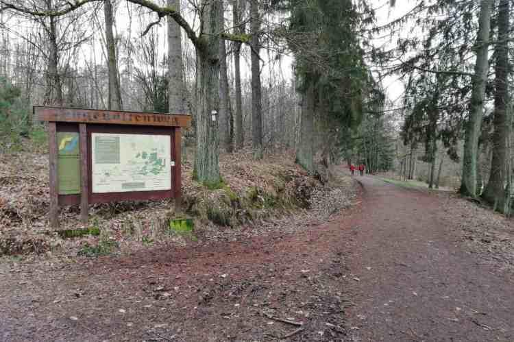 Hugenottenweg am Warndtweiher