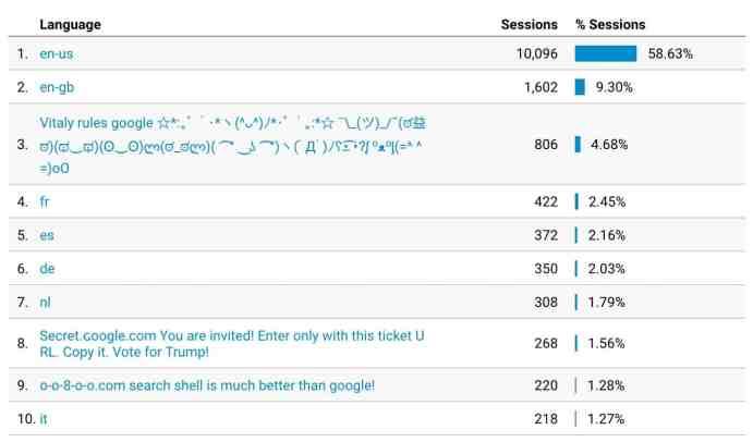 Google Analytics Language Spam