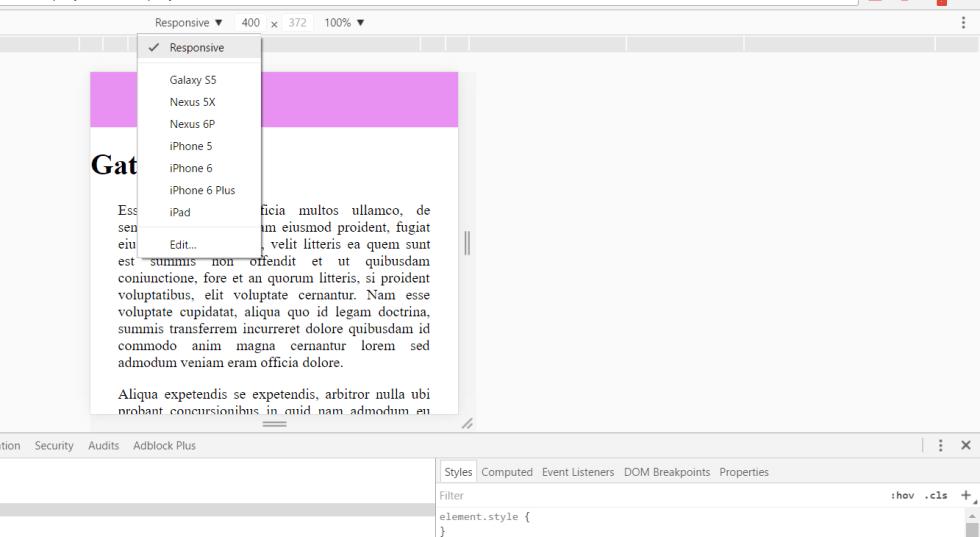 screen-gattino-0