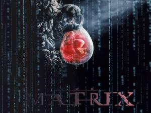 """Matrix, i """"cervelli in una vasca"""" di Putnam"""