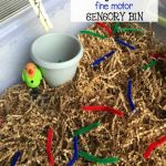 Feed birds pipe cleaners