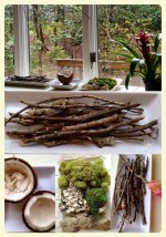 Reggio Emilia inspired nature table.Featured by Special Learning House. www.speciallearninghouse.com.jpg
