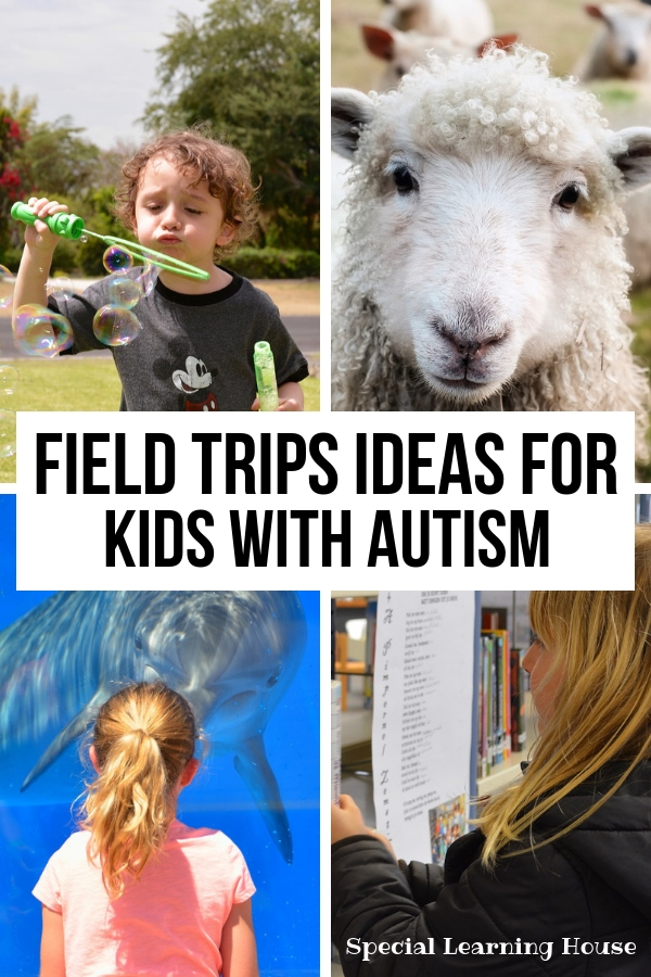 Field Trips Ideas for Kids with Autism
