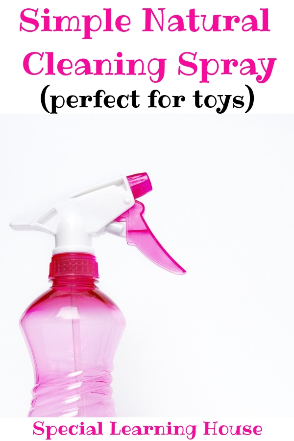 Natural Toy Cleanser for Disinfecting Toys