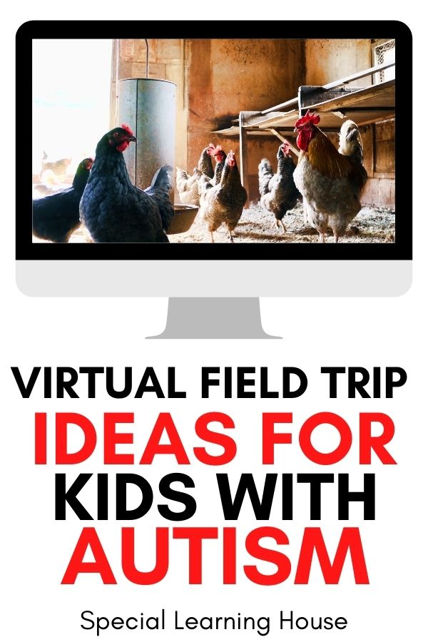 Virtual field trip ideas for kids including seeing chickens on the farm!