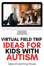 Virtual Field Trip Ideas for Kids with Autism