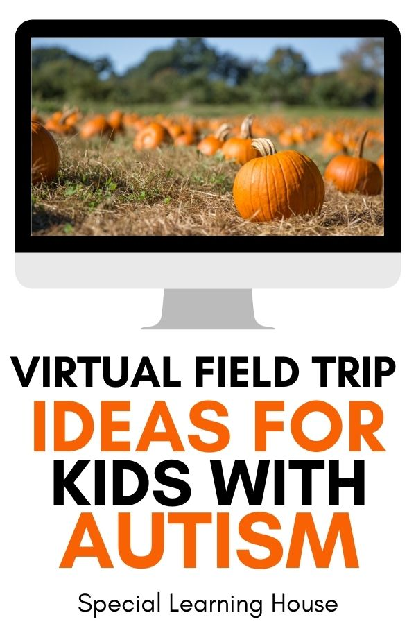 Virtual Field Trips Ideas for Kids with Autism