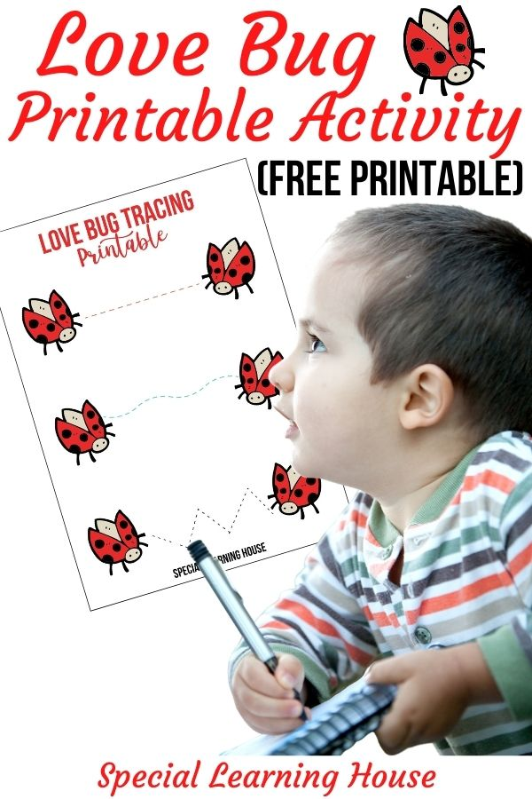 Love Bug Printable Activity
