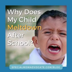 Why Does My Child Meltdown After School? | Special Mom Advocate