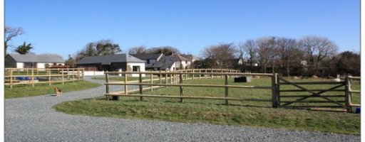 Charlie's farm project to create accessible holidays in Devon
