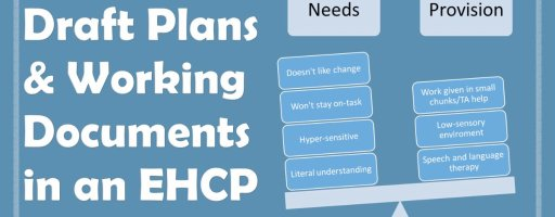 Draft Plans and Working Documents in an EHCP
