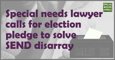 Special needs lawyer calls for election pledge to solve SEND disarray