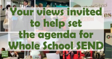 Your views invited to help set the agenda for Whole School SEND
