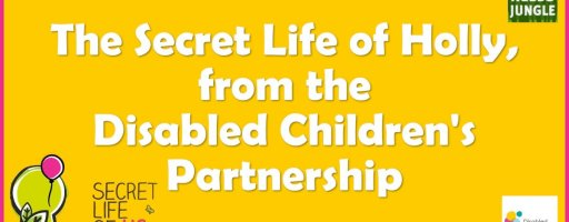 The Secret Life of Holly, from the Disabled Children's Partnership
