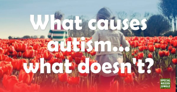 what causes autism doesnt