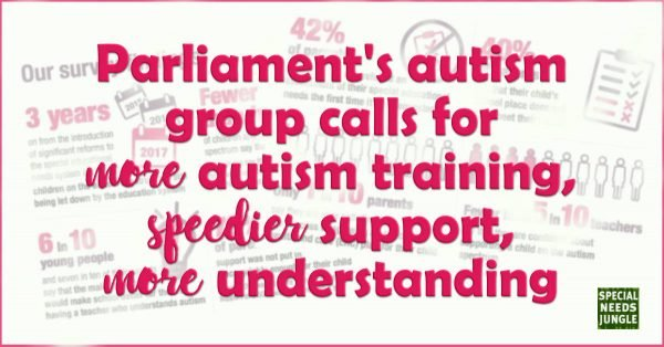 Parliament autism group calls for more autism training, speedier support, more understanding