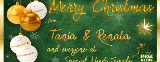 Merry Christmas from SNJ: Here's some brilliant SEND videos you won't want to miss!