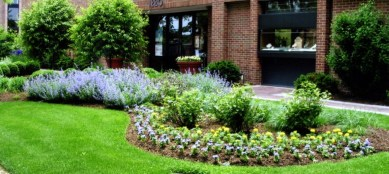 commercial_landscaping-940x420