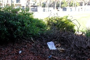 Trash on campus