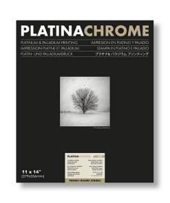 "Platinachrome 11x14"""