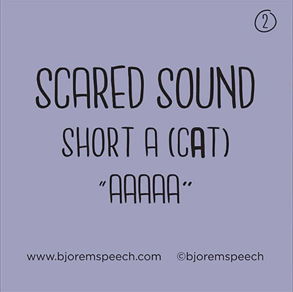 Bjorem Speech Sound Cues-5387