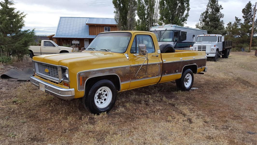 1973 Chevrolet C20 Cheyenne