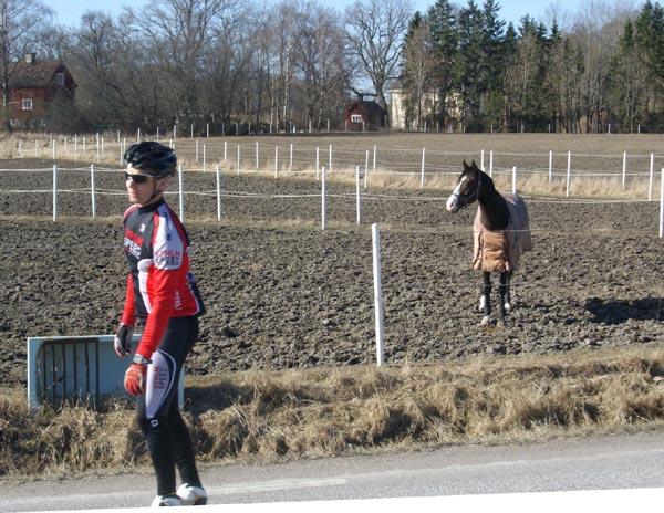 2009-04-04. Foto: Aadu Männik.