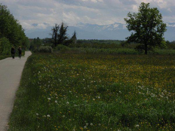 Bodensee 1 Foto CarlMagnus Lundberg