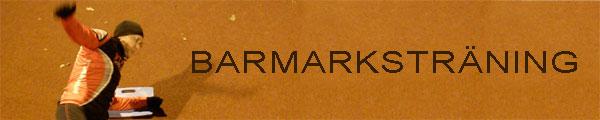 Barmarksträning Ö–IP 2010-10-26. Mobilkamerafoto: Ulf Haase.