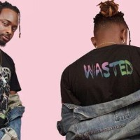 NEW VIDEO: SEAN TIZZLE- Wasted