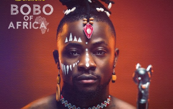 Bobo-Of-Africa-artwork