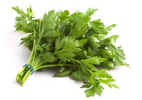 parsley benefits home reme s by speedyreme s