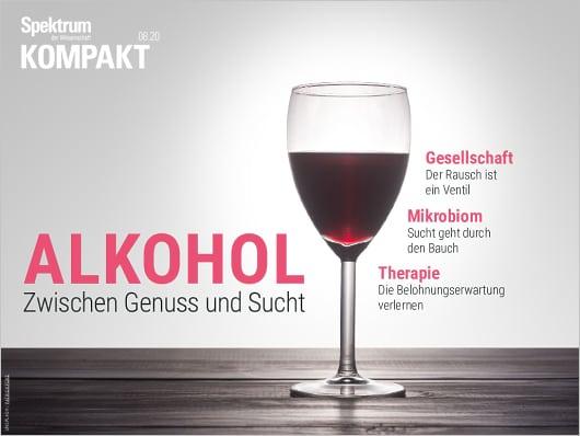wie schlimm ist alkohol in der