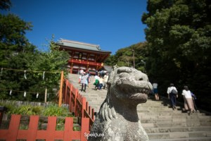 Grand Prix Travel Blog – 2017 Japanese F1 Grand Prix