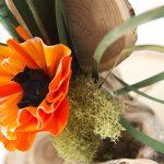 Creating a Paper Flower Arrangement with Contour Dies