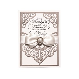 January 2019 Amazing Paper Grace Die of the Month is Here – Lacework Finery Slip-In Card