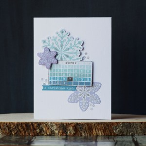Spellbinders Card Club Kit Extras! October 2019 Edition - Sparkling Holidays Collection.