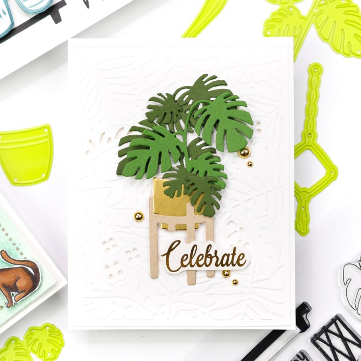 Take Time for You By FSJ Project Kit   Cardmaking Inspiration with Jenny Colacicco   Video