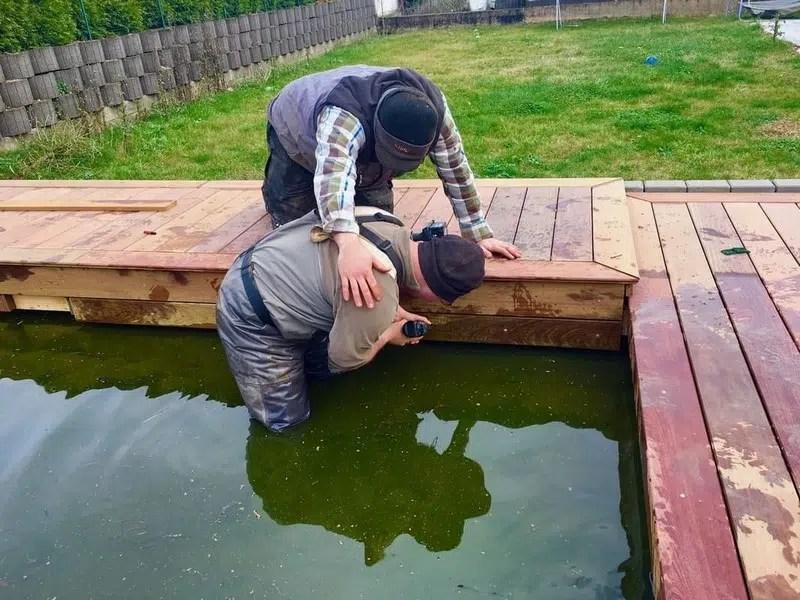 bassin piscine naturelle au